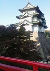 弘前菊祭り_500