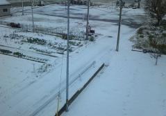 11.21雪_500