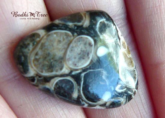 ツリテラアゲート ルース-a 天然石 パワーストーン720