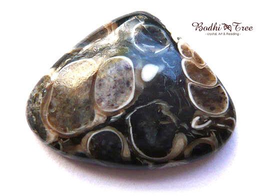 ツリテラアゲート ルース-a 天然石 パワーストーン719
