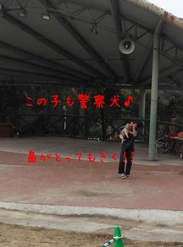 201311041447247a2.jpg