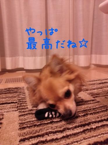 20131108233451dfc.jpg