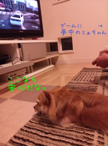 201311082335282cf.jpg