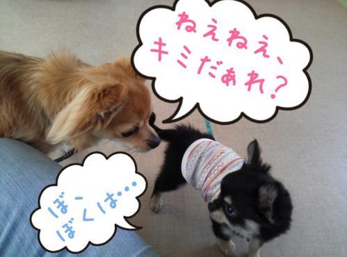 rakugaki_20130813_0004.jpg