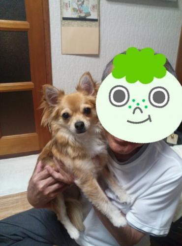 rakugaki_20130814_0006.jpg