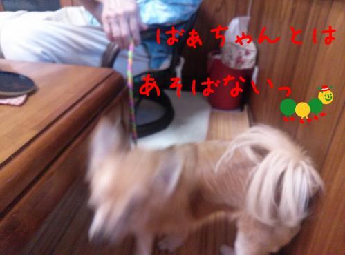 rakugaki_20130814_0010.jpg