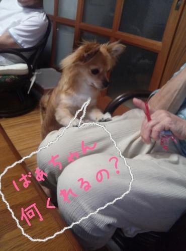 rakugaki_20130814_0011.jpg