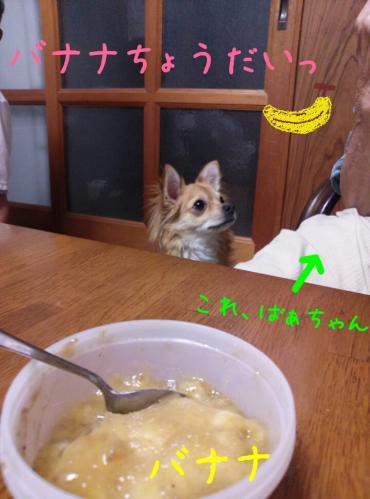 rakugaki_20130814_0013.jpg