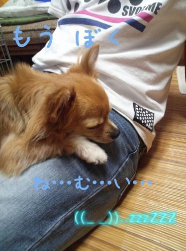 rakugaki_20130814_0015.jpg