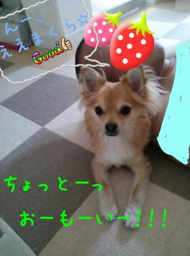 rakugaki_20130817_0005.jpg