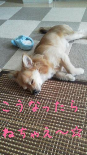 rakugaki_20130818_0003.jpg