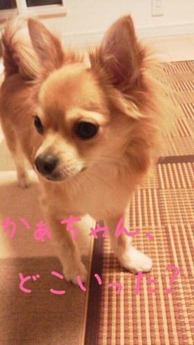 rakugaki_20130818_0005.jpg