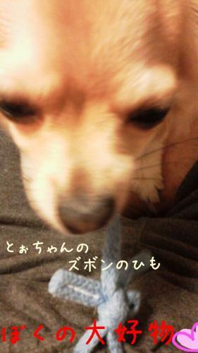 rakugaki_20130819_0003.jpg