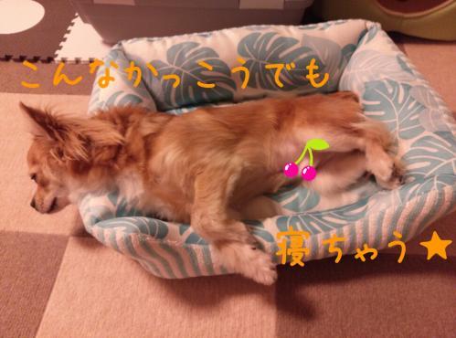 rakugaki_20130819_0006.jpg