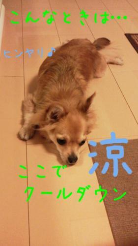 rakugaki_20130820_0003.jpg