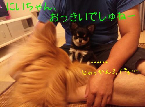 rakugaki_20130822_0008.jpg