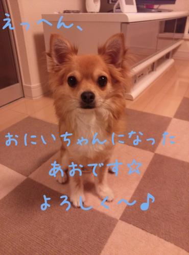 rakugaki_20130823_0001.jpg