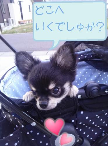 rakugaki_20130823_0004.jpg