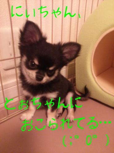 rakugaki_20130823_0007.jpg