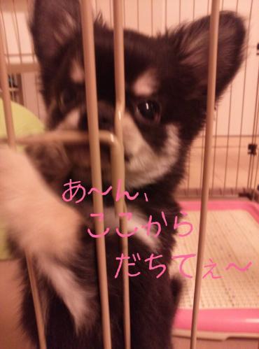 rakugaki_20130823_0016.jpg