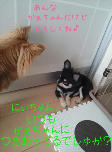 rakugaki_20130823_0024.jpg