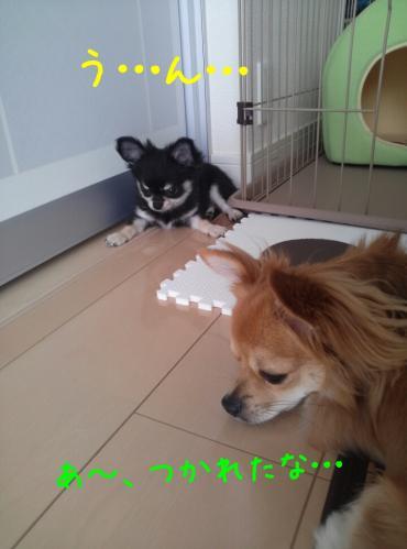 rakugaki_20130823_0026.jpg