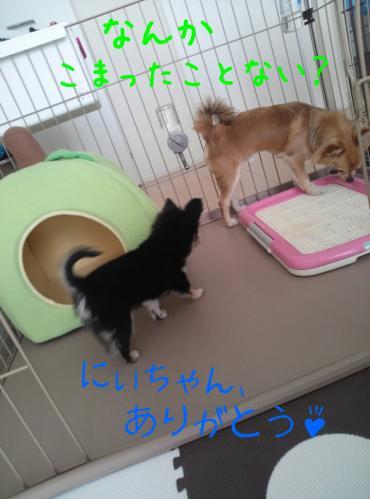 rakugaki_20130823_0027.jpg