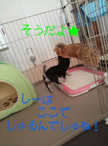 rakugaki_20130823_0028.jpg