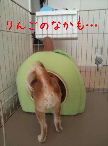 rakugaki_20130823_0029.jpg