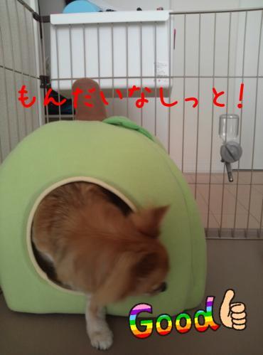 rakugaki_20130823_0030.jpg