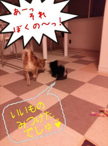 rakugaki_20130823_0035.jpg