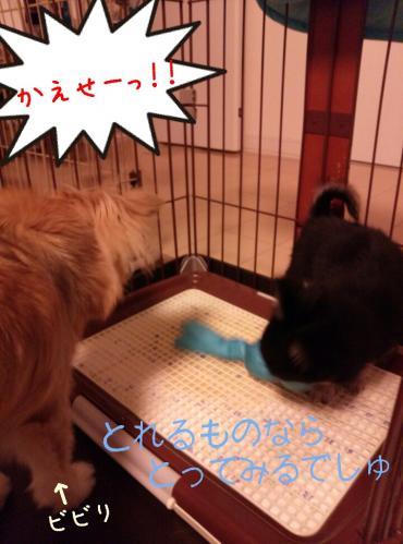 rakugaki_20130823_0036.jpg