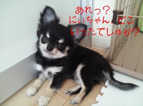 rakugaki_20130823_0037.jpg