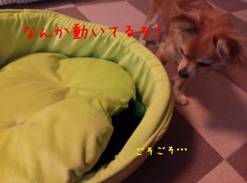 rakugaki_20130824_0004.jpg