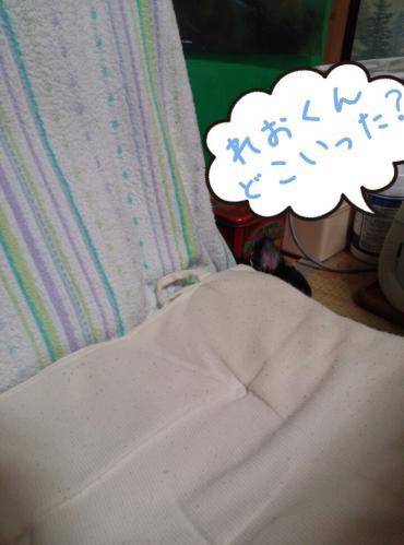 rakugaki_20130825_0001.jpg