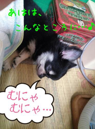 rakugaki_20130825_0002.jpg