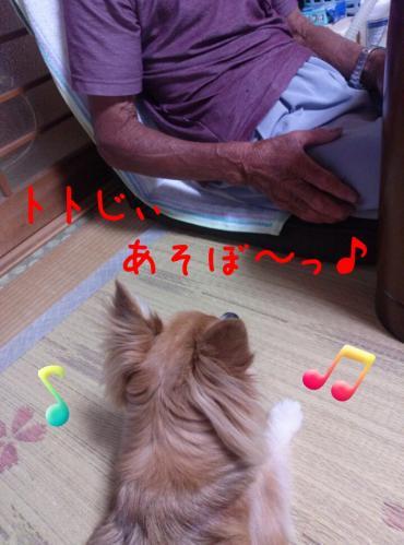 rakugaki_20130825_0003.jpg