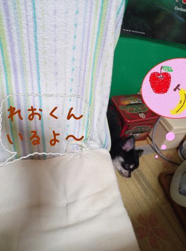 rakugaki_20130825_0006.jpg