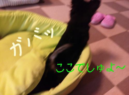rakugaki_20130825_0008.jpg