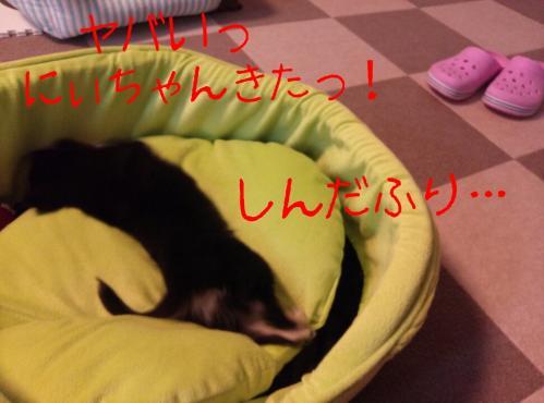 rakugaki_20130825_0009.jpg