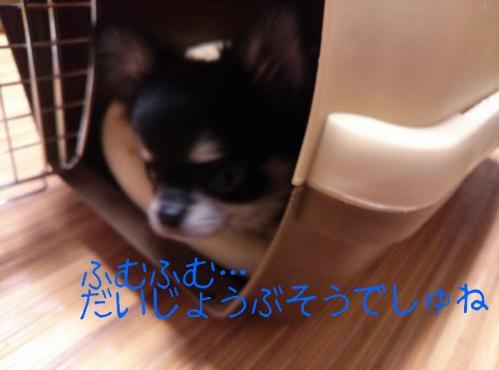 rakugaki_20130825_0013.jpg