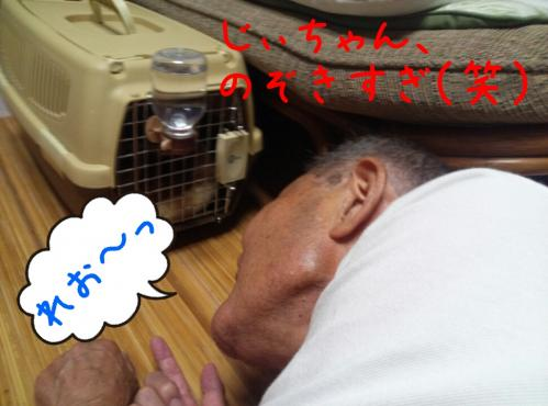 rakugaki_20130825_0014.jpg