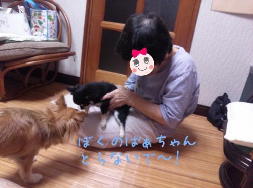 rakugaki_20130825_0016.jpg