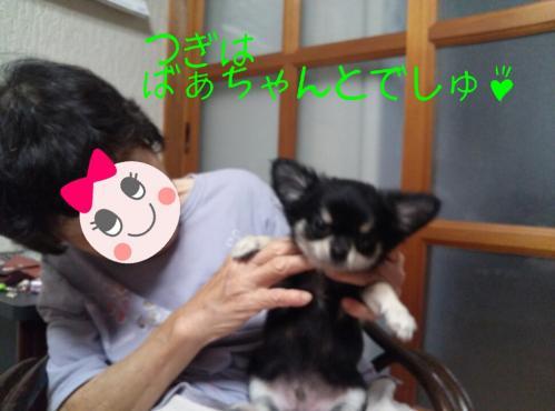 rakugaki_20130825_0017.jpg