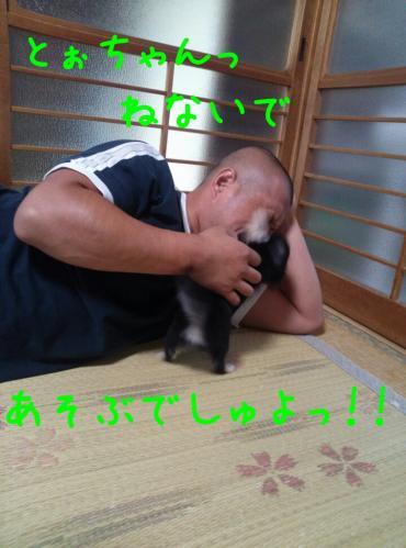 rakugaki_20130825_0022.jpg