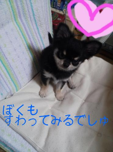 rakugaki_20130825_0024.jpg