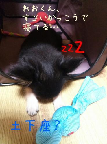 rakugaki_20130825_0030.jpg