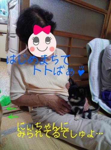 rakugaki_20130825_0031.jpg