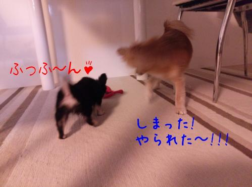 rakugaki_20130825_0034.jpg