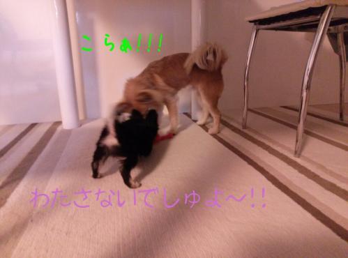 rakugaki_20130825_0035.jpg